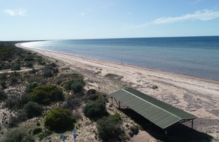 Picture of 43 HOSKING ROAD, Tiddy Widdy Beach SA 5571