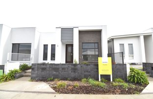 Picture of 12 Pamphlet Place, Palmview QLD 4553