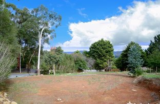 Picture of 7 Lillis Court, Millgrove VIC 3799