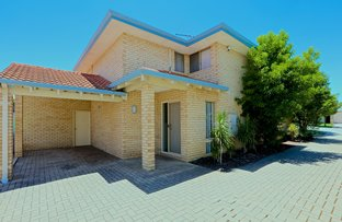 Picture of 173A Herbert Street, Doubleview WA 6018