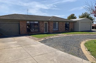 Picture of 6 Symes Court, Willaston SA 5118