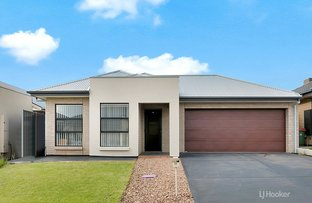 Picture of 10 Teviot Place, Blakeview SA 5114