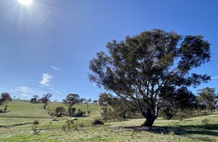 Picture of Lot 132, 1488 Mutton Falls Road, O'Connell NSW 2795