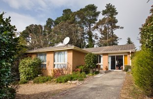 Picture of 17 Irvine Ave, Blackheath NSW 2785