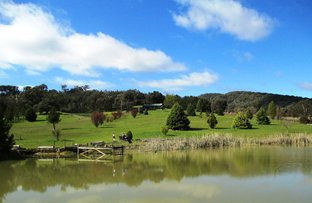 Picture of 555 CRYSTAL CREEK ROAD, Whanregarwen VIC 3714