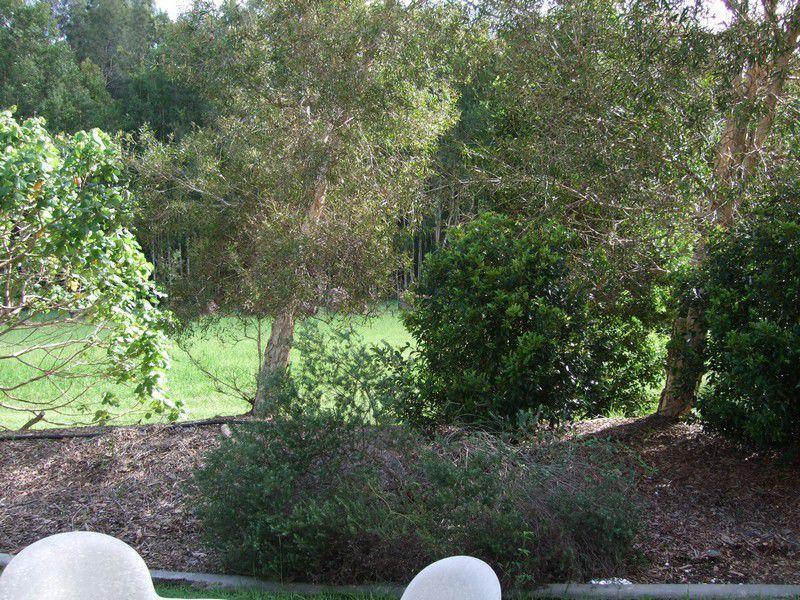 105/73 Hilton Terrace, Noosaville QLD 4566, Image 1