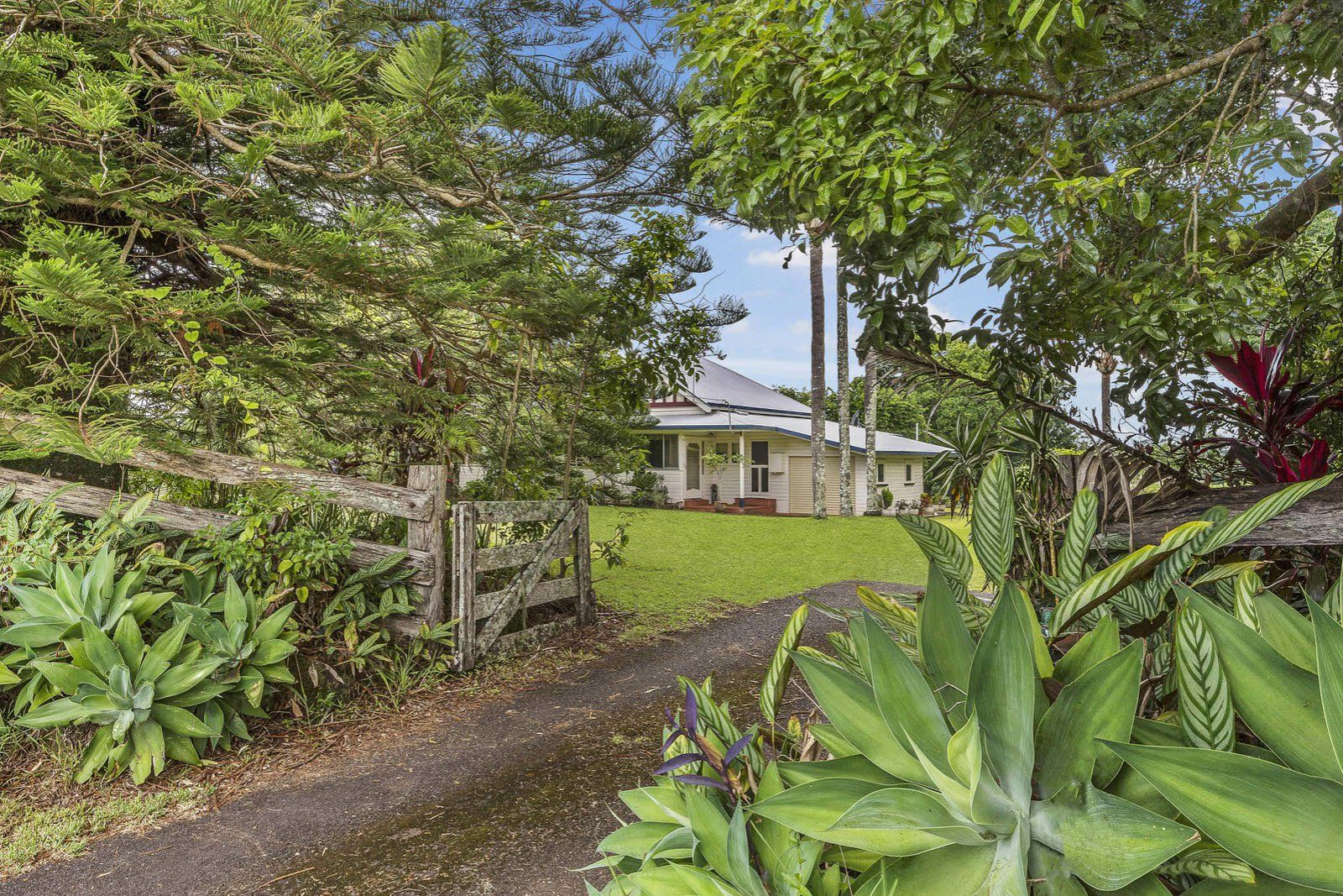 89 Wardell Road, Alstonville NSW 2477, Image 0