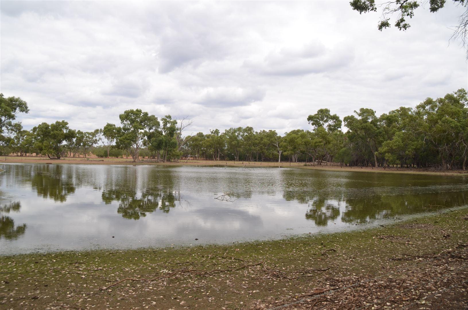 * Tara, Cooneybar Road, Cobar NSW 2835, Image 0