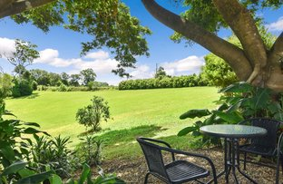 Picture of 152-166 Western Ave, Montville QLD 4560