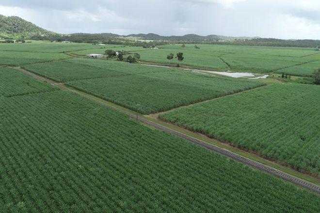 Picture of 68 Mezzens Road, SUNNYSIDE QLD 4737