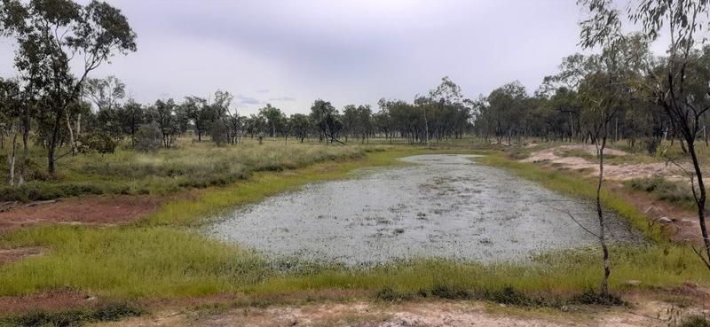 Lot 14, Flinders Highway, Campaspe QLD 4820, Image 2
