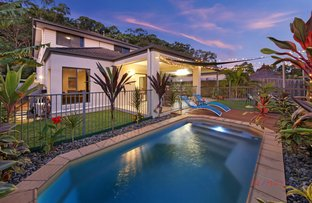 Picture of 11 Tall Trees Way, Little Mountain QLD 4551