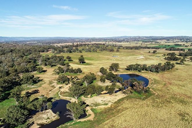 Picture of 7368 Burrendong Way, WELLINGTON NSW 2820