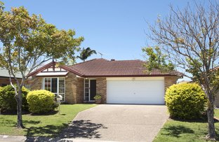 14 Bloomfield Place, Carina QLD 4152