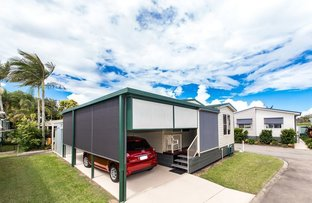 Picture of Site 159/319 Bradman Ave, Maroochydore QLD 4558