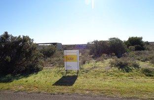 Picture of 31 Sandpiper Drive, Thompson Beach SA 5501