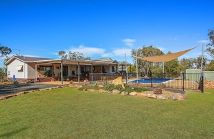 Picture of 481 Quia Station Road, Gunnedah NSW 2380