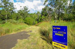 3225 Kyogle  Road, Mount Burrell NSW 2484