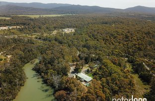Picture of 586 Greens Beach Road, York Town TAS 7270