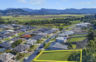 Picture of 17 Coral Fern Circuit, Murwillumbah NSW 2484