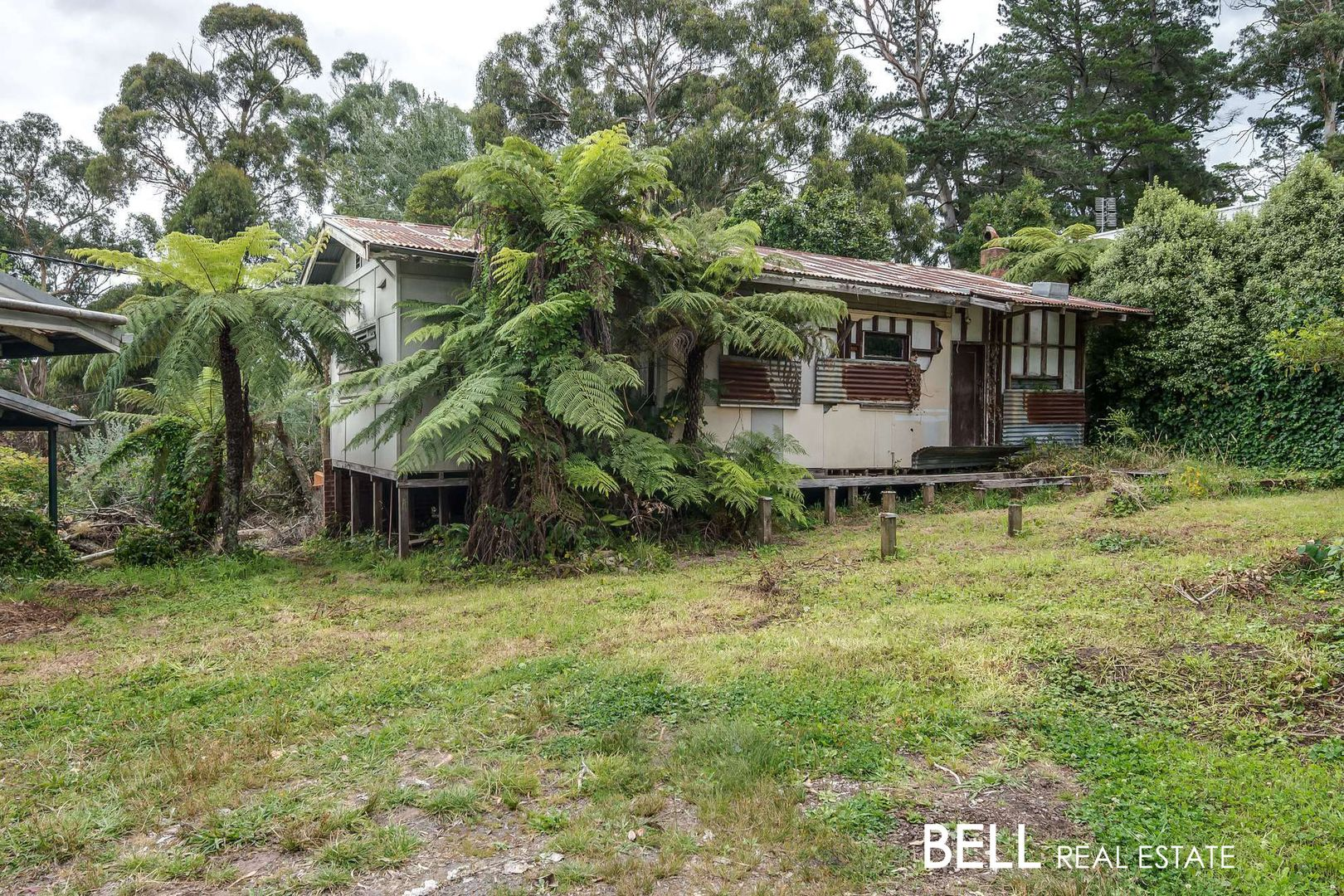 109 Belgrave-Gembrook Road, Selby VIC 3159, Image 2