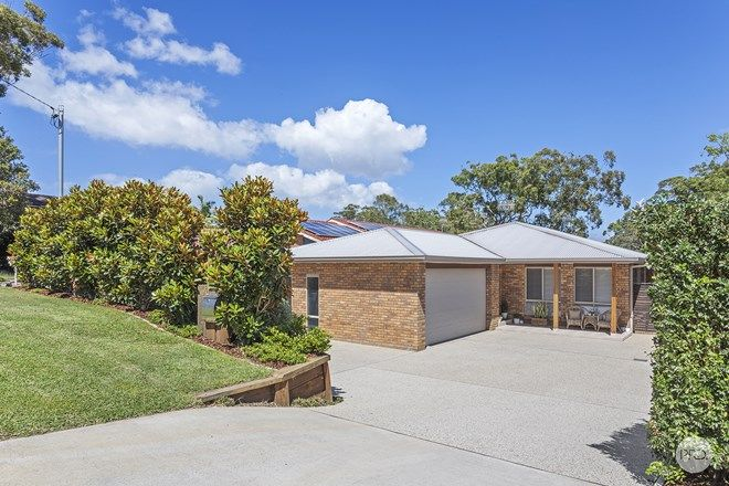 Picture of 44 Armidale Avenue, NELSON BAY NSW 2315