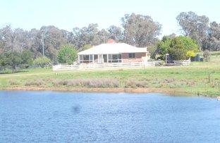 1361 Kenyu Road, Boorowa NSW 2586