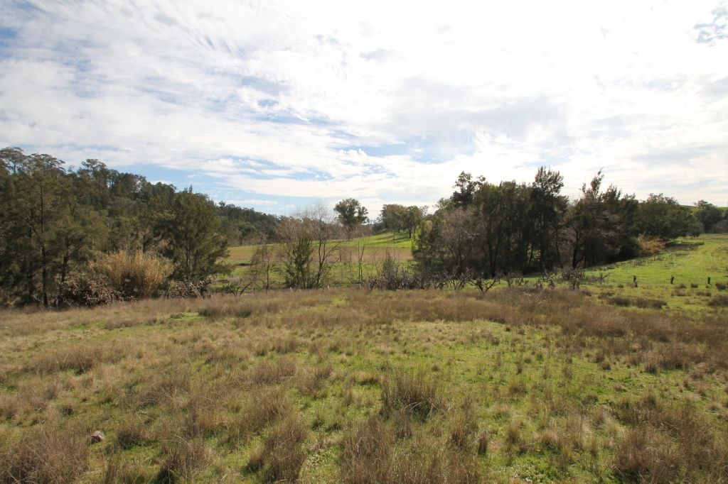 Lot 12 Grandview Place, Quirindi NSW 2343, Image 2