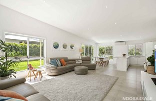 Picture of 41 Jacksonia Place, Noosaville QLD 4566
