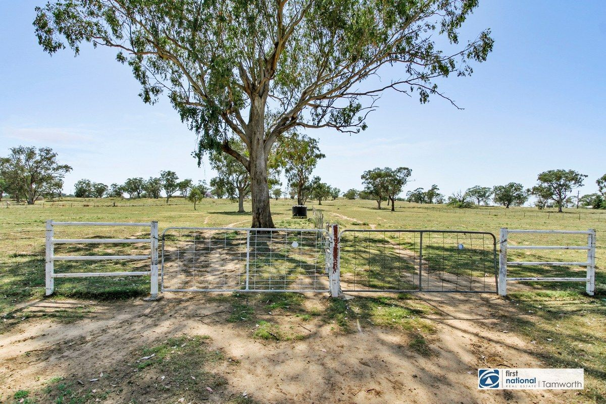 80 Anchor Road, Tamworth NSW 2340, Image 1
