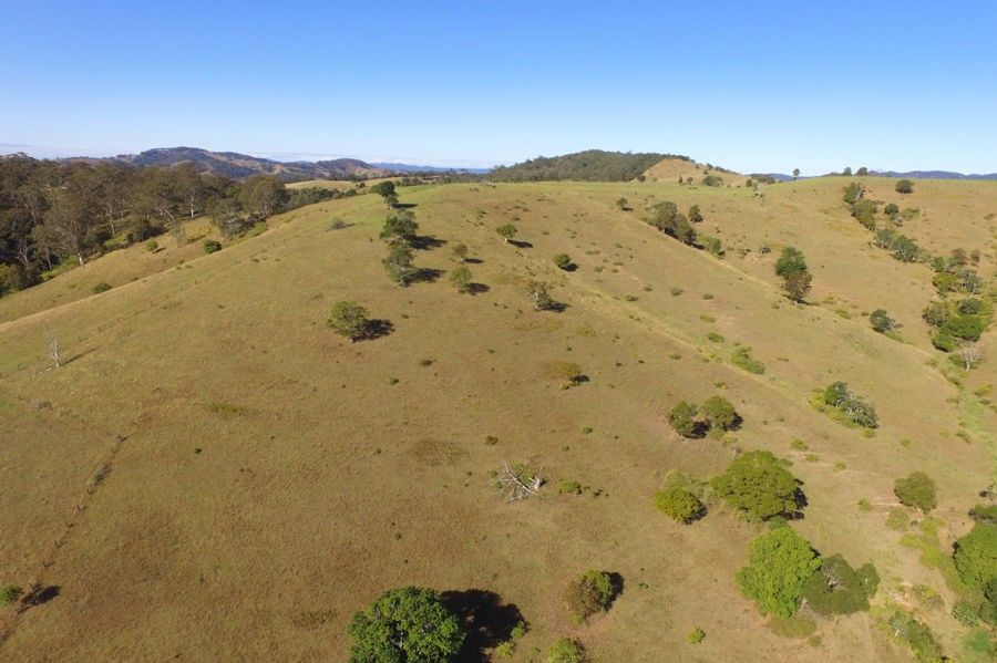 Lot 105 DP 1098525 Tipperary Rd, Tipperary NSW 2429, Image 2