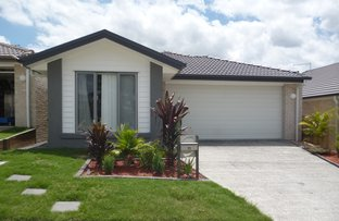 Picture of 11 Orb Street, Yarrabilba QLD 4207