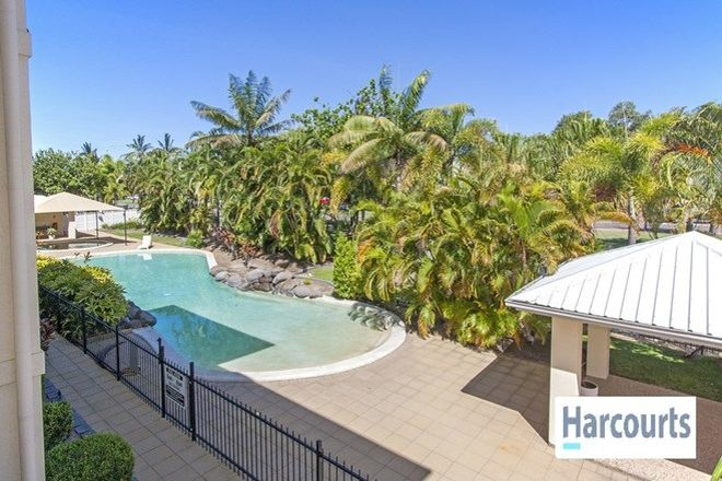 Picture of 19/18-30 Sir Leslie Thiess Drive, TOWNSVILLE CITY QLD 4810