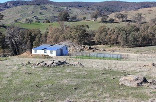 Picture of 460 SAWPIT GULLY ROAD, Boho VIC 3669