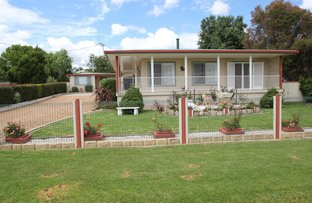 223 Douglas Street, Tenterfield NSW 2372