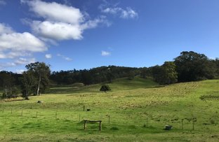 Picture of 464 Dunns Road, Kyogle NSW 2474