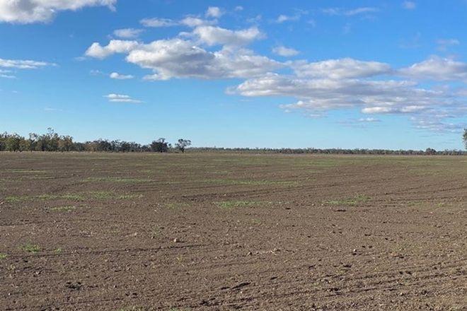 """Picture of Part """"Bukulla"""", COLLARENEBRI NSW 2833"""