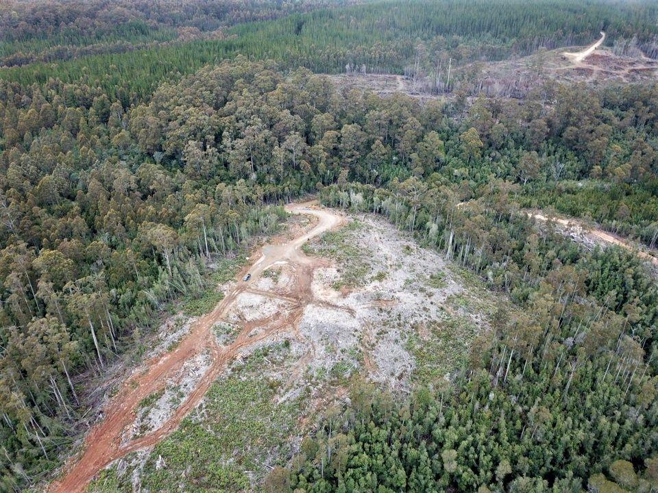 1 Murchison  Highway, Henrietta TAS 7325, Image 2