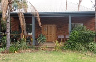 Picture of 13 Narrandera St, Lake Cargelligo NSW 2672
