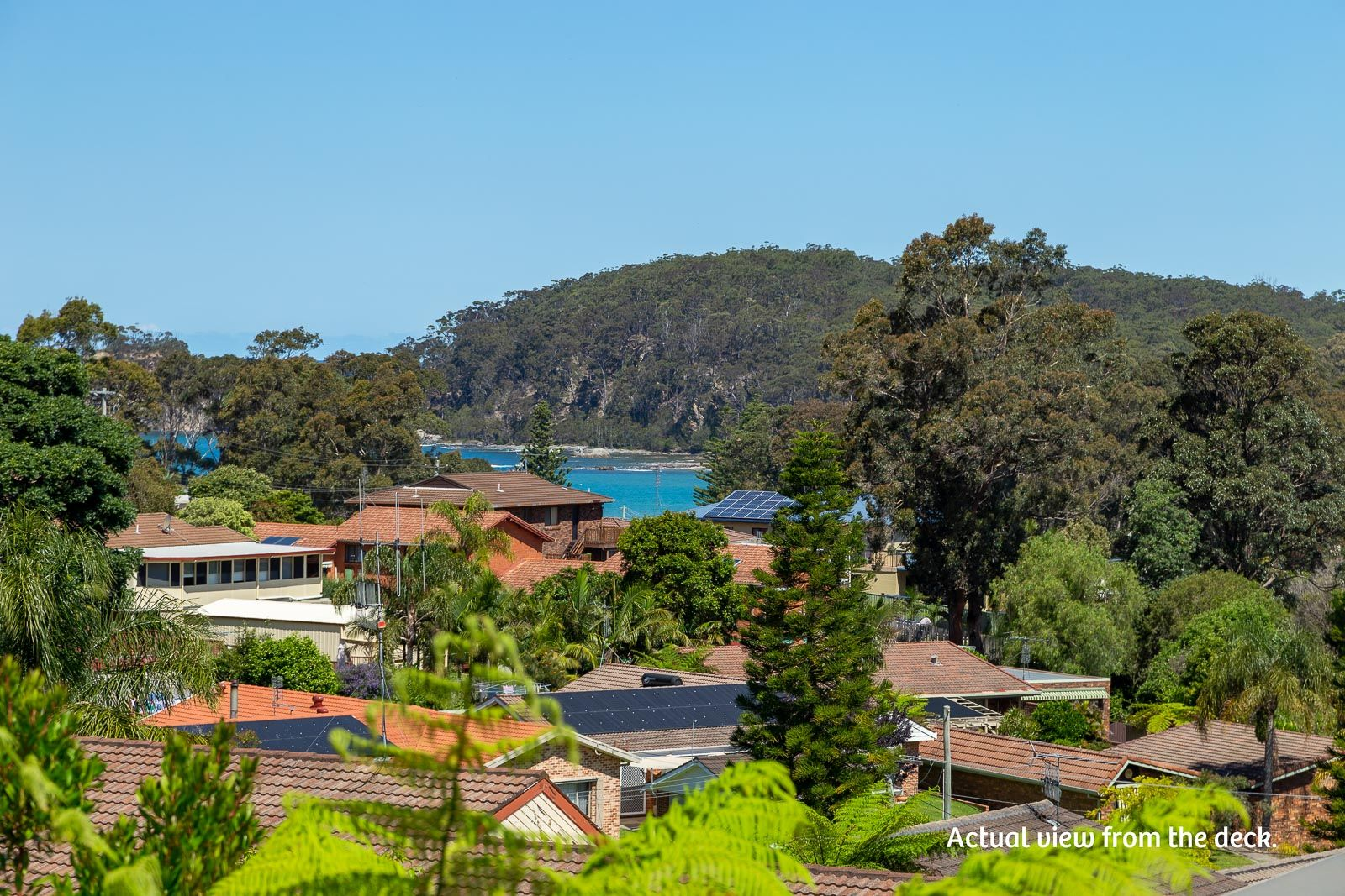 47 Cook Avenue, Surf Beach NSW 2536, Image 1