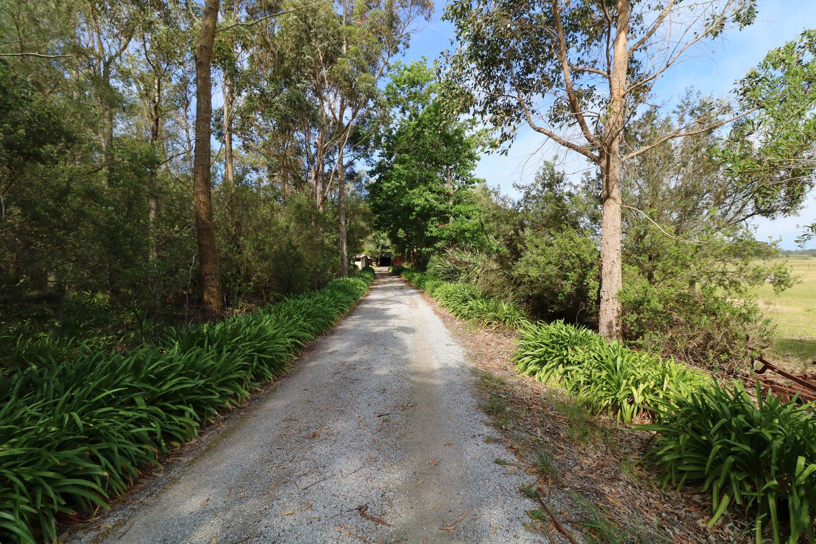 360 Marlo Plains Road, Marlo VIC 3888, Image 1