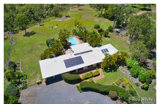 Picture of 117 Glendale Road, Glendale QLD 4711