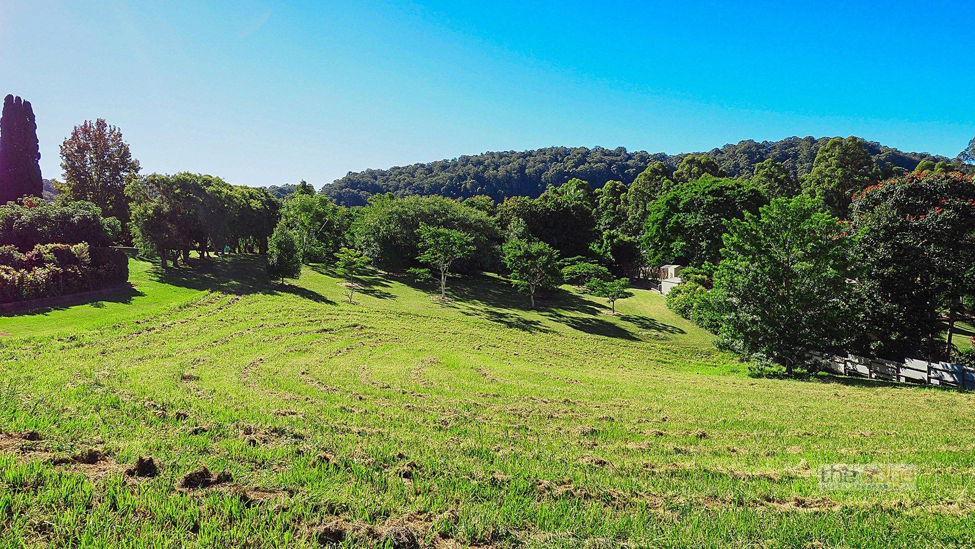 11 Raintree Place, Boambee NSW 2450, Image 0