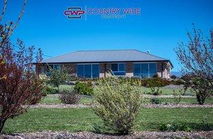 Picture of 70 Hewitt Road, Glen Innes NSW 2370