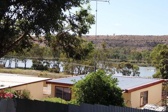 Picture of Lot 3 Perseverance Court, YOUNGHUSBAND SA 5238