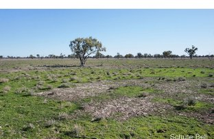 Picture of . Wolkara, Brewarrina NSW 2839
