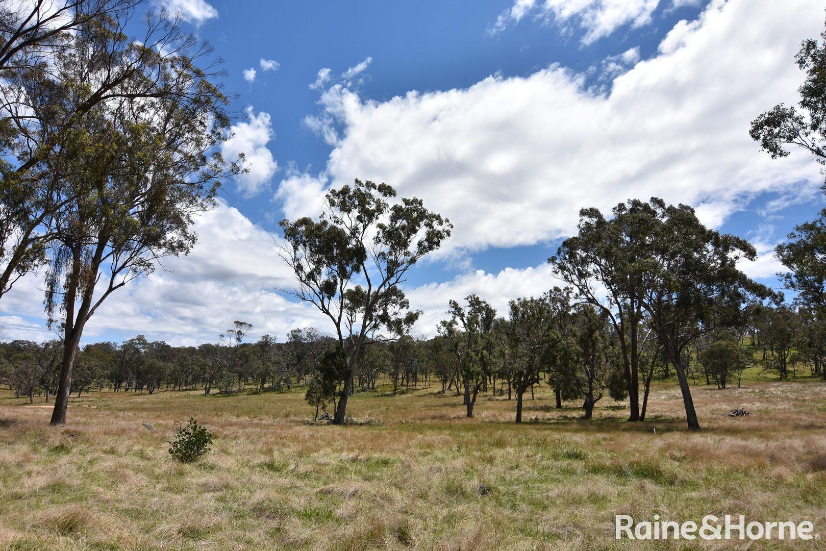 Lot 252 and 577 Wellington Vale Road, Deepwater, Glen Innes NSW 2370, Image 2