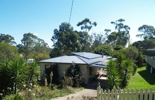 Picture of 29 Bega St, Wolumla NSW 2550