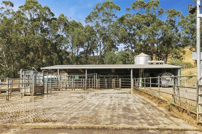 Picture of 95 Gunns Road, CARRAJUNG VIC 3844