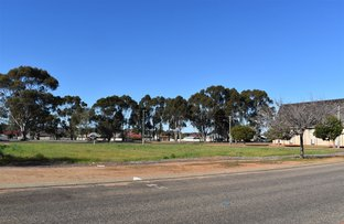 Picture of 27 Hassell Street, Katanning WA 6317
